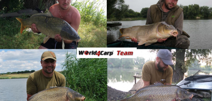 2017 year. Conclusion from World4Carp team